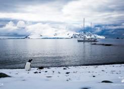 Antartica, o continente branco