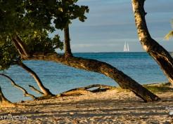 Uma praia tranquila na Polinesia Francesa